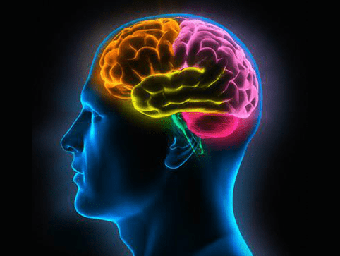 Neuro & Spine Surgery